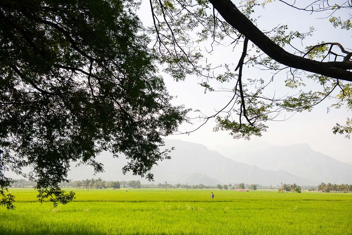 motorbike trip in india